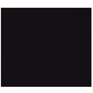 Logotipo Madrid Capital Moda